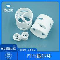 DN20/25/35/50/65/76氟塑料填料四氟PTFE鲍尔环