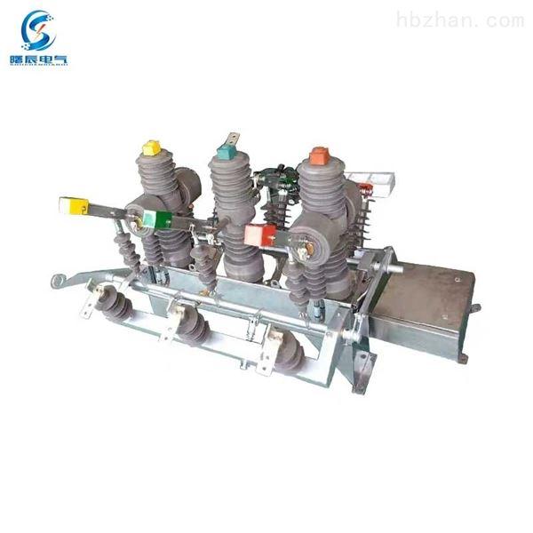 河南10KV双电源自动切换装置断路器HZW32-12