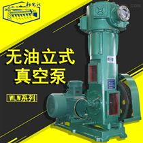 WLW新安江无油立式真空泵