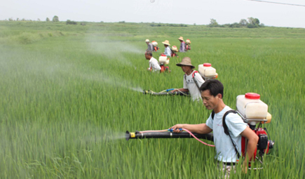 教授研究出广谱生物农药 只杀害虫不杀益虫