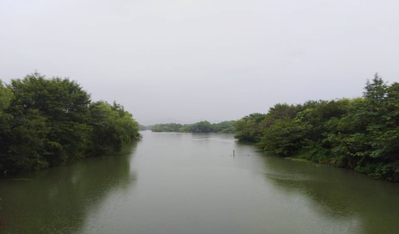 《浙江省治污水暨水污染防治行动2020年实施方案(征求意见稿)》发布