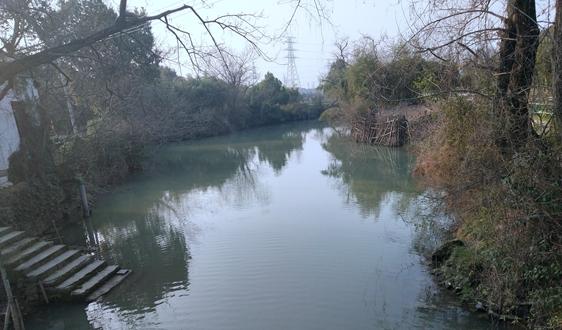 广东省生态环境厅回复:关于水污染物排放标准的确定