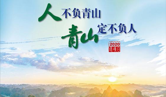 世界环境日,佳华科技在行动!