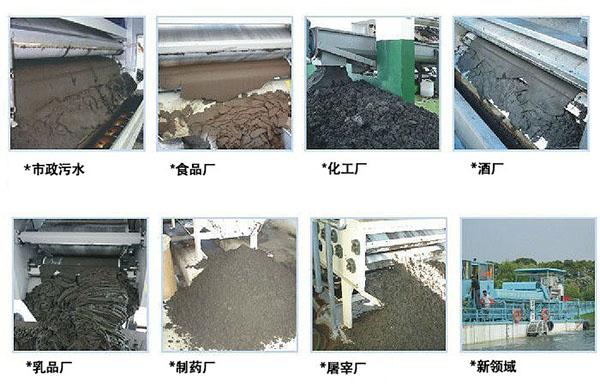 食品和饮料污水处理带式污泥脱水机出泥效果
