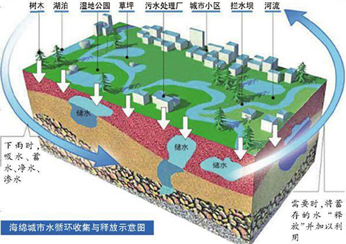 成都建設公園城市初步確定六大場景!生態價值超乎想象
