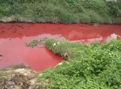 广东惠州现一条污染血河 网友喊环保局长来游泳