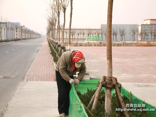 天津无纺布多少钱一吨?天津印花无纺布
