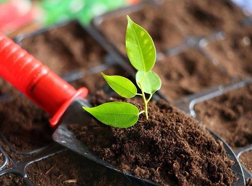 土壤修复从业资质真要来了