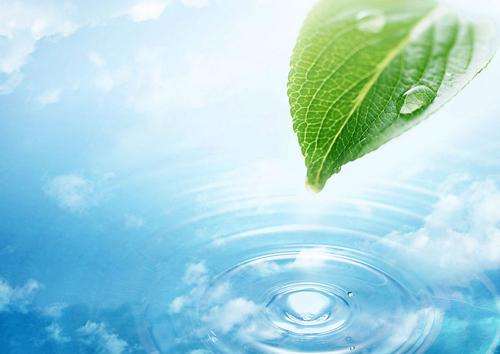 背景 壁纸 绿色 绿叶 设计 矢量 矢量图 树叶 素材 植物 桌面 500_35