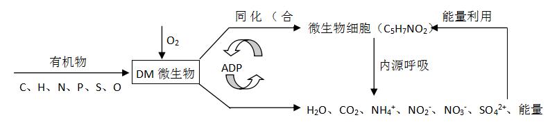 电路 电路图 电子 原理图 793_177