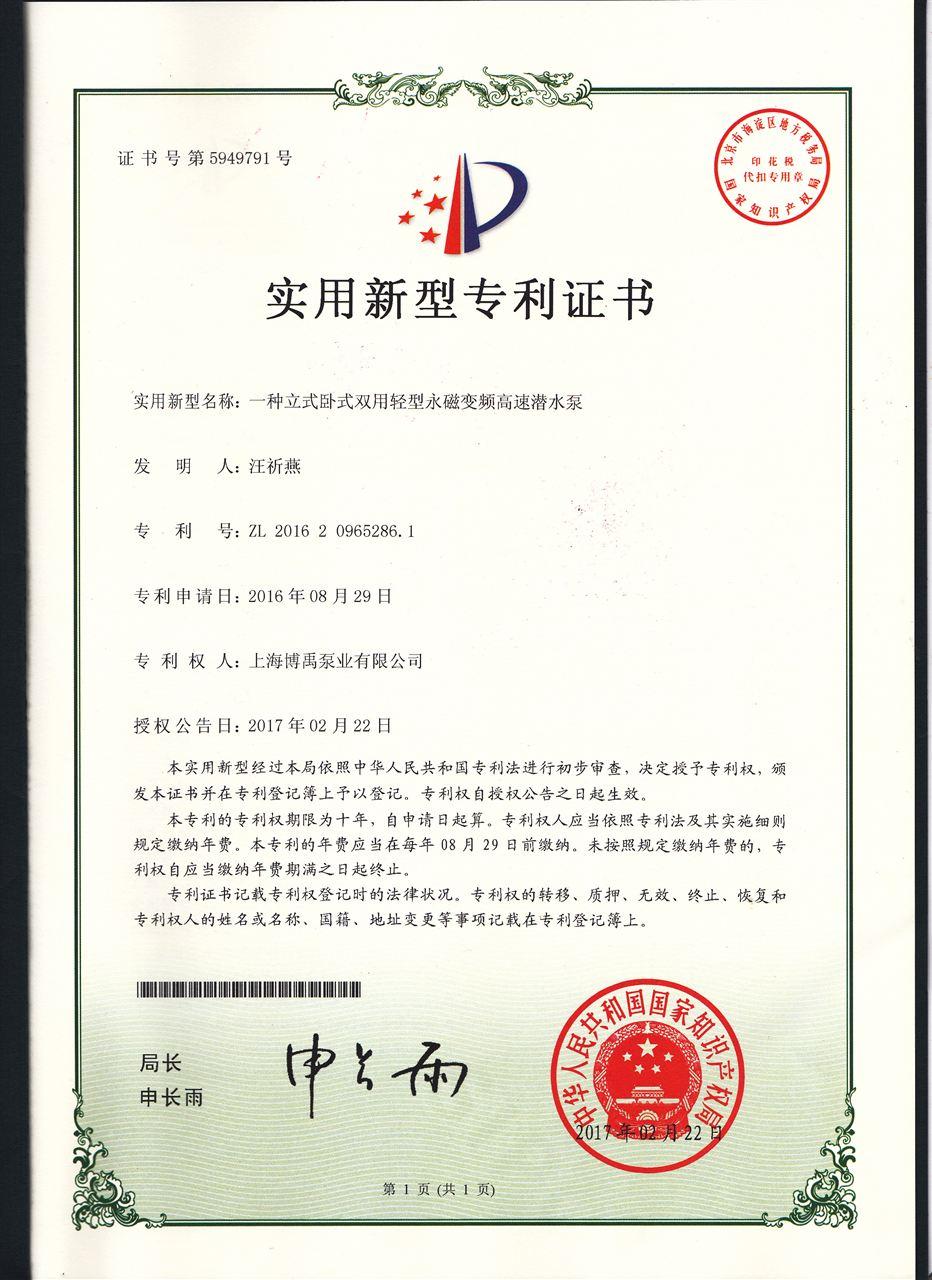 永磁电机轻型潜水泵证书