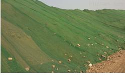 綠色防塵网