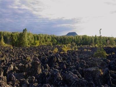 土壤检测,土壤常规五项检测,内蒙古土壤检测机构
