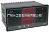 WP-D833-01-03-3L三回路数显表