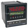 WP-L902-02-AAG-HL-2P流量积算控制仪