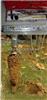 (LQS)土壤采样器 型号:KH05-KHT-002库号:M92740