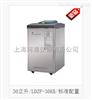 LDZF-30KB立式压力蒸汽灭菌器(标准配置)